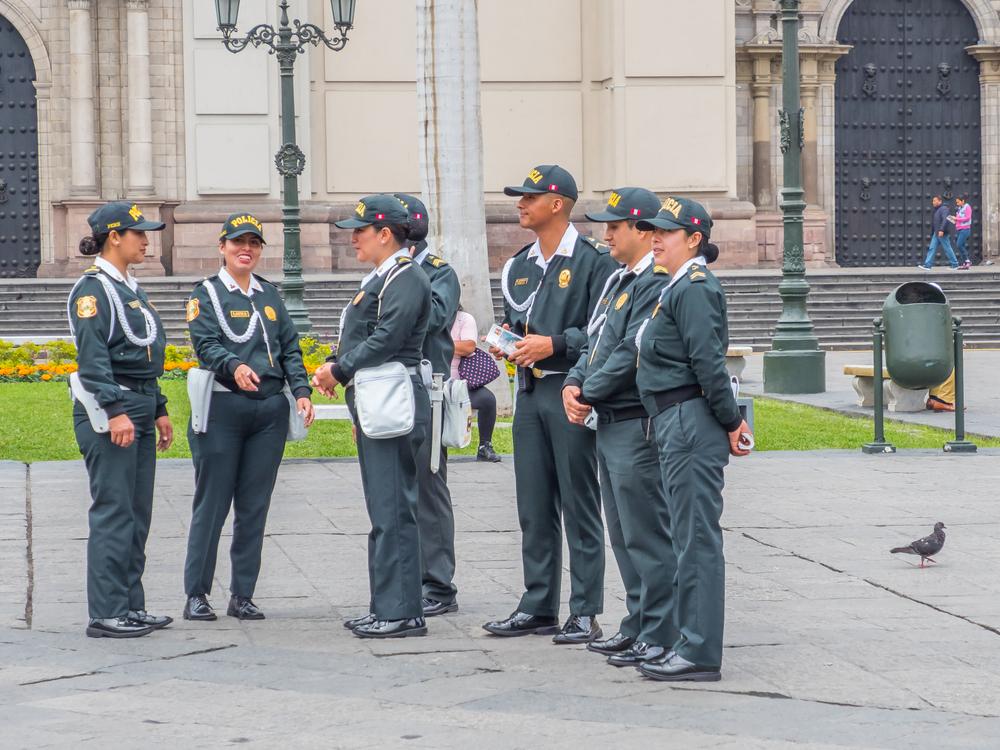 Apuntes constitucionales sobre nuevo régimen de pensiones militar-policial